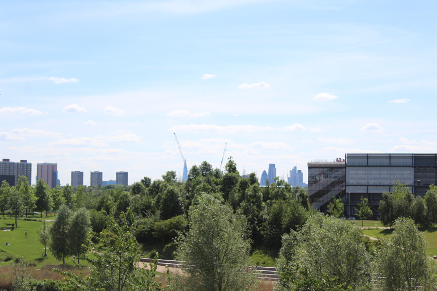 view from the olympic Park